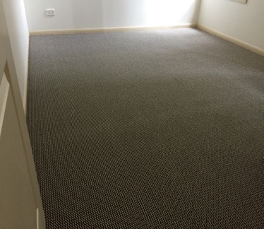 Carpet for your rental property,
