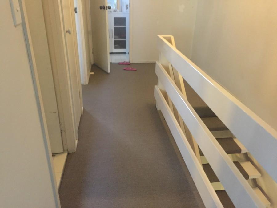 Cheap Rental Carpet Gold Coast and Brisbane area