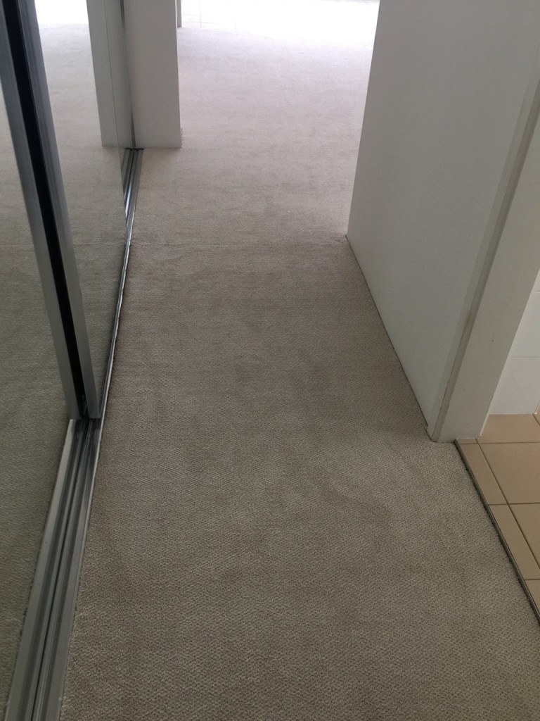 Rental carpet on the Gold Coast